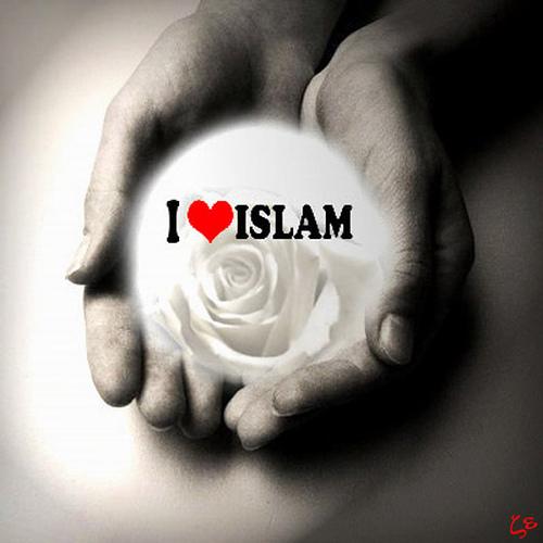 اسلام . دین اسلام . اسلام مظلوم . دین مظلوم . دین . ظهور . کمپین ظهور
